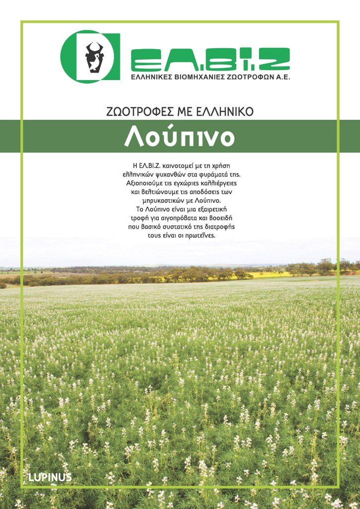 loupino1